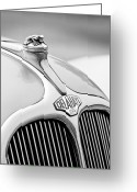 Black And White Photos Greeting Cards - 1947 Delahaye 135 MS Langenthal Coupe Hood Ornament and Emblem Greeting Card by Jill Reger