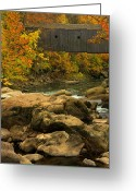 Foilage Greeting Cards - Autumn at Bulls Bridge Greeting Card by Karol  Livote
