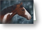 Quarter Horses Greeting Cards - Cara Blanca Greeting Card by Ricardo Chavez-Mendez