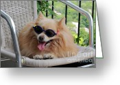 Panting Dog Greeting Cards - Dog in Summer Greeting Card by Charline Xia