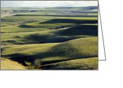 Great Plains Greeting Cards - Flint Hills of Kansas Greeting Card by Thomas Bomstad