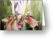 Mother Gift Painting Greeting Cards - Iris Painting Greeting Card by Irina Sztukowski