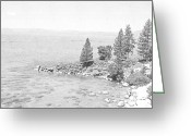 Forested Greeting Cards - Lake Tahoe Secret Cove Greeting Card by Frank Wilson