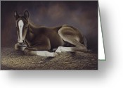 Hay Painting Greeting Cards - Lucky Greeting Card by Ricardo Chavez-Mendez