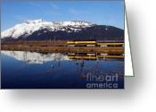 Snow Scenes Greeting Cards - Passing Reflection 1 Greeting Card by Mel Steinhauer