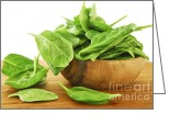 Food And Beverage Greeting Cards - Spinach Greeting Card by Elena Elisseeva