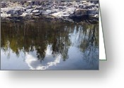 Johannessen Greeting Cards - Spring Reflections Greeting Card by Torfinn Johannessen
