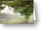 Transparent Green Greeting Cards - Spring water Greeting Card by Les Cunliffe