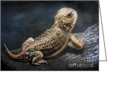 Horned Lizard Greeting Cards - Sunbather Greeting Card by Karen Barton