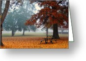 Park Benches Greeting Cards - The Leaves Have Fallen Greeting Card by Carlie Hensley