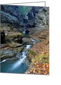 Robert Harmon Greeting Cards - Watkins Glen Greeting Card by Robert Harmon