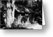 Sheds Greeting Cards - Woodshed Shadows Greeting Card by Mel Steinhauer