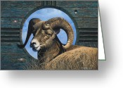 Bighorn Greeting Cards - Zia Ram Greeting Card by Ricardo Chavez-Mendez