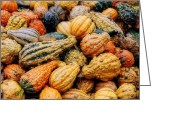 Autumn Scenes Photo Greeting Cards - Autumn Gourds Greeting Card by Joann Vitali