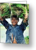 Campesino Greeting Cards - Filipino Lad with Rice Shoots Greeting Card by Gerald Edward Logan