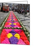 Gaspar Avila Greeting Cards - Flower carpets  Greeting Card by Gaspar Avila