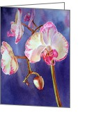 Red Orchid Blooms Greeting Cards - Orchid Greeting Card by Irina Sztukowski