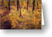 Shady Greeting Cards - Autumn Greeting Card by Svetlana Sewell