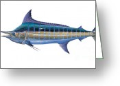 Mako Shark Greeting Cards - Blue Marlin Greeting Card by Carey Chen