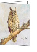 Long Eared Owl Greeting Cards - Long-eared Owl Greeting Card by Iain S Byrne