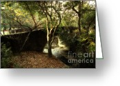 Cal Bear Greeting Cards - Pedestrian Bridge And Strawberry Creek  . 7D10152 Greeting Card by Wingsdomain Art and Photography