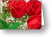 Photographs With Red. Greeting Cards - 3 Red Roses with Babys Breath Greeting Card by Ann  Murphy