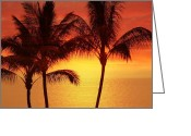Tropical Photographs Greeting Cards - Red Sunset. Greeting Card by Athala Carole Bruckner