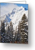 Vacationers Greeting Cards - Wasatch Mountains in Winter Greeting Card by Utah Images