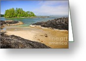 Beach Scenery Greeting Cards - Coast of Pacific ocean on Vancouver Island Greeting Card by Elena Elisseeva