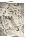 Featured Drawings Greeting Cards - Tiger  Greeting Card by Matt Steffen