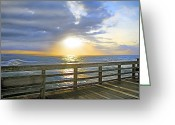 Peering Greeting Cards - A Glorious Moment Greeting Card by East Coast Barrier Islands Betsy A Cutler