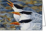 Tern Greeting Cards - A Royal Trio Greeting Card by Phyllis Beiser