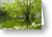 Nantahala Forest Greeting Cards - After the Rain on the Valley River Greeting Card by Debra and Dave Vanderlaan