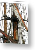 Karo Evans Greeting Cards - All Masts Greeting Card by Karo Evans