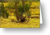 Old Relics Greeting Cards - An Old Grass Cutter In Lincoln City New Mexico Greeting Card by Jeff  Swan