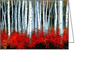 Colorado Mountains Greeting Cards - Aspens Greeting Card by Michael Swanson