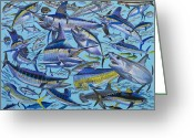 Runner Greeting Cards - Atlantic Gamefish Greeting Card by Carey Chen