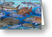 Mutton Greeting Cards - Atlantic Inshore Species Greeting Card by Carey Chen