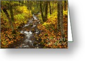 Cascades Greeting Cards - Autumn Steam Greeting Card by Mike  Dawson