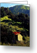 Contemporary Horse Digital Art Greeting Cards - Barn in Grimes Canyon Greeting Card by Ron Regalado