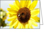 Pollinate Greeting Cards - Bee Greeting Card by Les Cunliffe