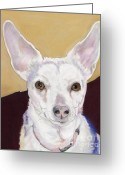 Dog Prints Pastels Greeting Cards - Belle Greeting Card by Pat Saunders-White