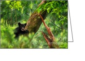 Black Bear Climbing Tree Greeting Cards - Black bear cub in tree  - artistic Greeting Card by Dan Friend