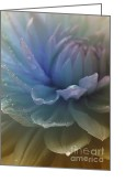 Most Photo Greeting Cards - Blue Danube Greeting Card by Sweet Moments Photography