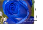 Blue Petals Greeting Cards - Blue Rose textured Greeting Card by Sharon  Talson