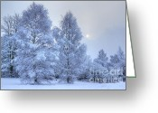 David Birchall Greeting Cards - Blue Winter Greeting Card by David Birchall