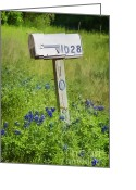Texas Wildflowers Greeting Cards - Bluebonnets and Mailbox Greeting Card by Joan Carroll