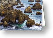 Pacific Greeting Cards - Bodega Head Greeting Card by Garry Gay