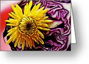 Eateries Greeting Cards - Cabbage and Mum Greeting Card by Sarah Loft