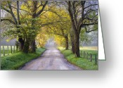 Appalachian. Greeting Cards - Cades Cove Great Smoky Mountains National Park - Sparks Lane Greeting Card by Dave Allen